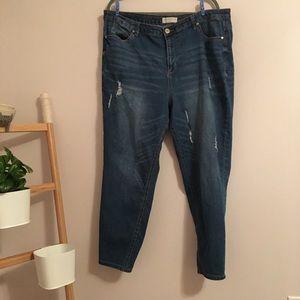 Eloquii Jeans